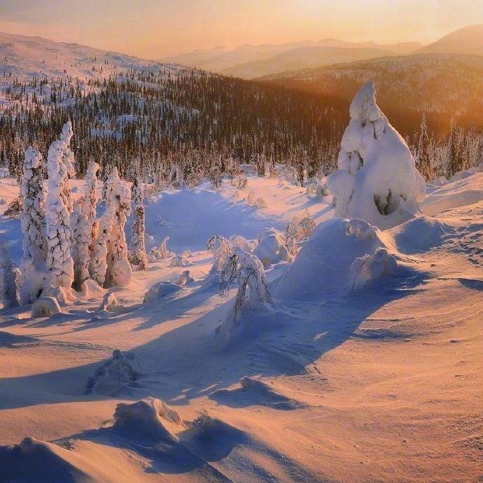 阳光下的雪景 …